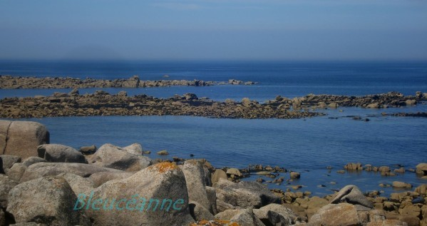 Maree-basse-finistere-nord-copie-1.JPG