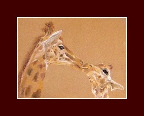 giraphesphs640 GF 1