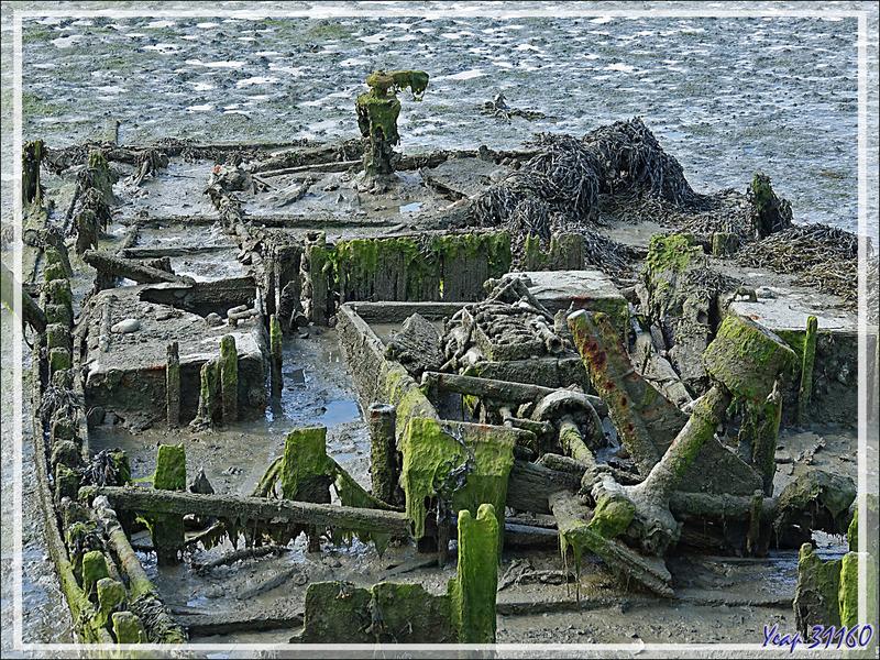 Vestiges du passé ... - Fier d'Ars - Les Portes-en-Ré - Ile de Ré - 17