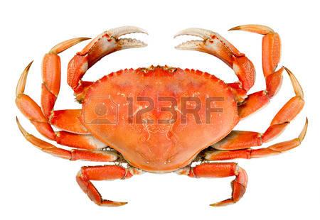 terrine de crabe et crevettes