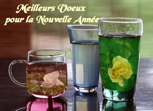 des-roses-a-l-eau-BA.jpg