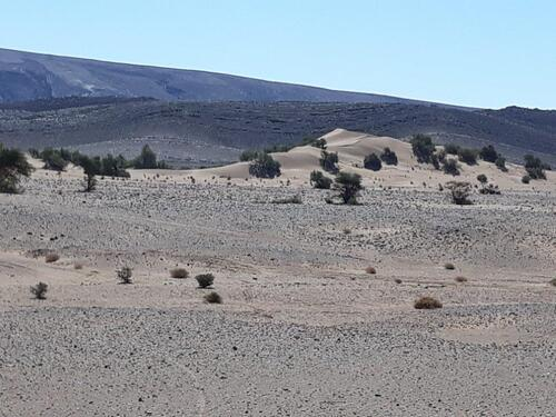 Toujours des paysags désertiques