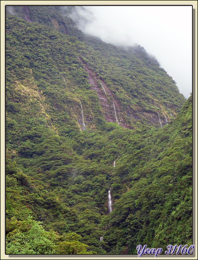 Cascades dans la brume - Vallée de Papenoo - Tahiti - Polynésie française