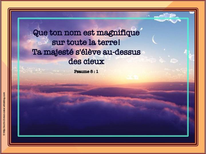 Que ton nom est magnifique - Psaumes 8 : 1