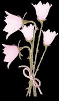 Rose Pure