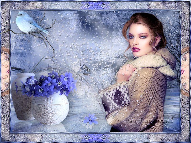 Cadres hiver 2