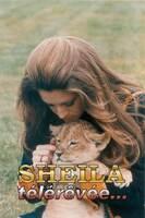 Mai 1976 : Sheila et Micha