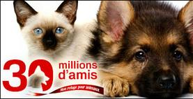30 Millions d'Amis ♥