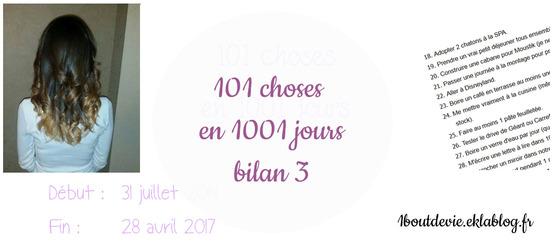 101 choses en 1001 jours : bilan 3