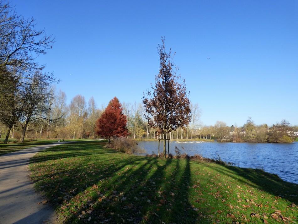 Notre parc dans ses habits d'hiver