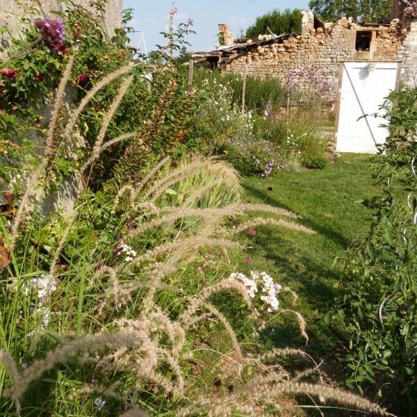 cagouille-s-garden---massif-cote-face--800x800-.jpg