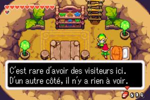 The Minish Cap - Chapitre 11 - La vallée des Rois