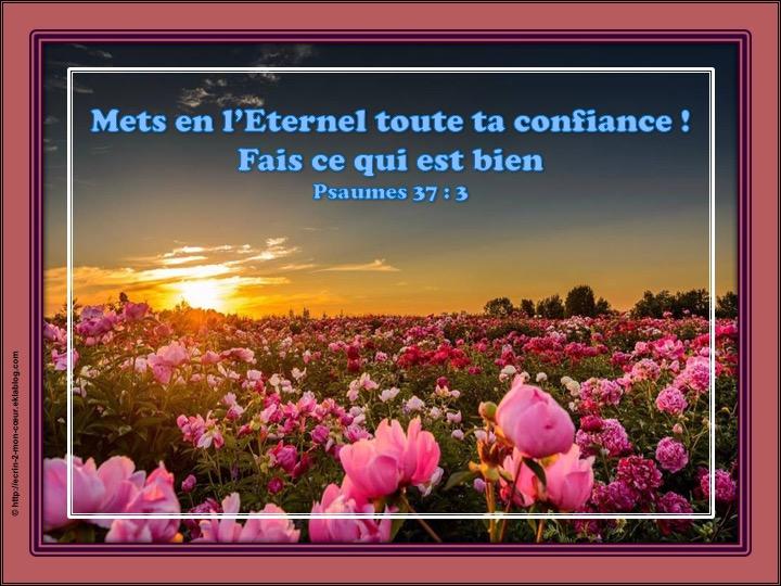 Mets en l'Eternel toute ta confiance, Fais ce qui est bien - Psaumes 47 : 3