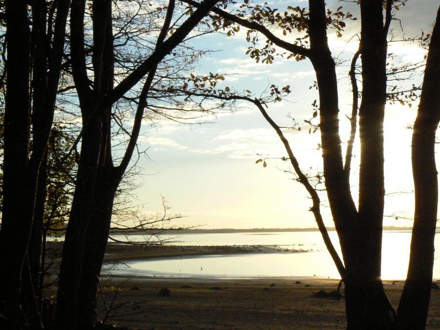 Coucher de soleil sur le lac du Der (1)