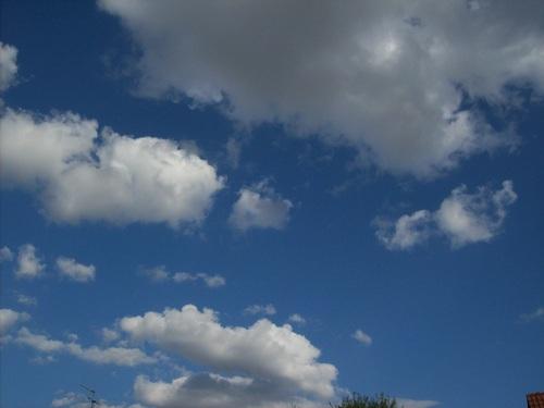 Le ciel est bleu .