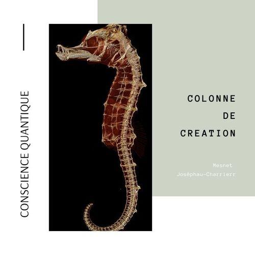 Colonne de création (ancienne kundalini)