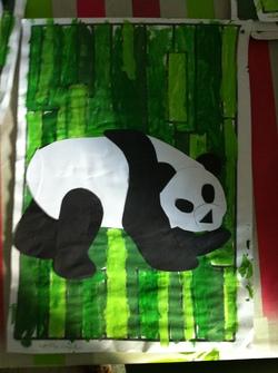 Chine: les pandas dans les bambous