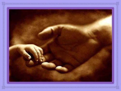 Choisis et établis par Dieu (1 à 5)