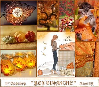 Bon Dimanche ! Octobre de Francis Cabrel .....