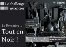 libelul-banner-challenge-nuancier6-201111.jpg