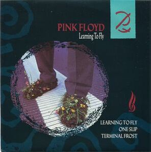 Les SINGLéS # 107 : Pink Floyd - Learning to fly (1987)