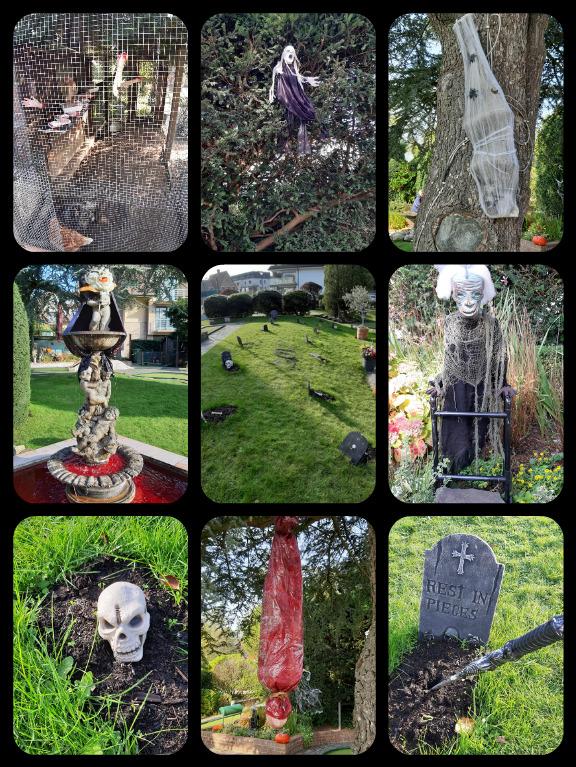 Halloween à Cowyde