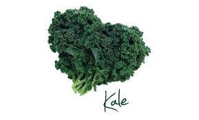 """Résultat de recherche d'images pour """"kale"""""""