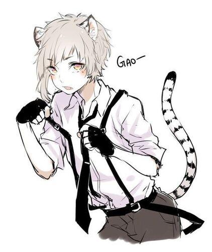 """Résultat de recherche d'images pour """"neko boy manga"""""""