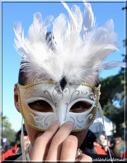 Carnaval de Nice 2014 (3)
