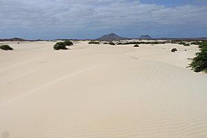 désert de viana10