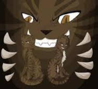 Etoile du Tigre, Plume de Faucon et Griffe de Ronce