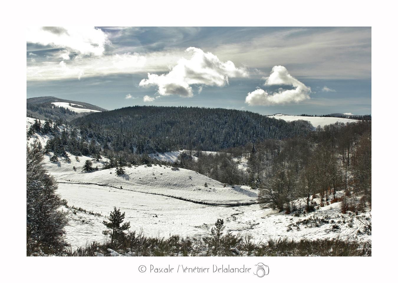 Paysages Du Mont Aigoual en hiver