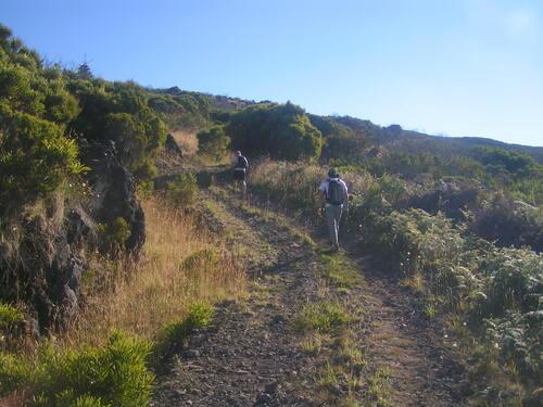 De la Route Forestière des Tamarins au rempart du Cirque de Cilaos (RANDONNÉE)