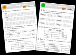 Fichier d'évaluation vocabulaire CE1-CE2