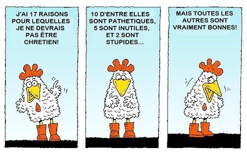 """Série """"Tête de poulet"""""""