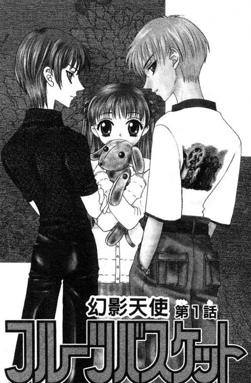 Tomes de Fruits Basket