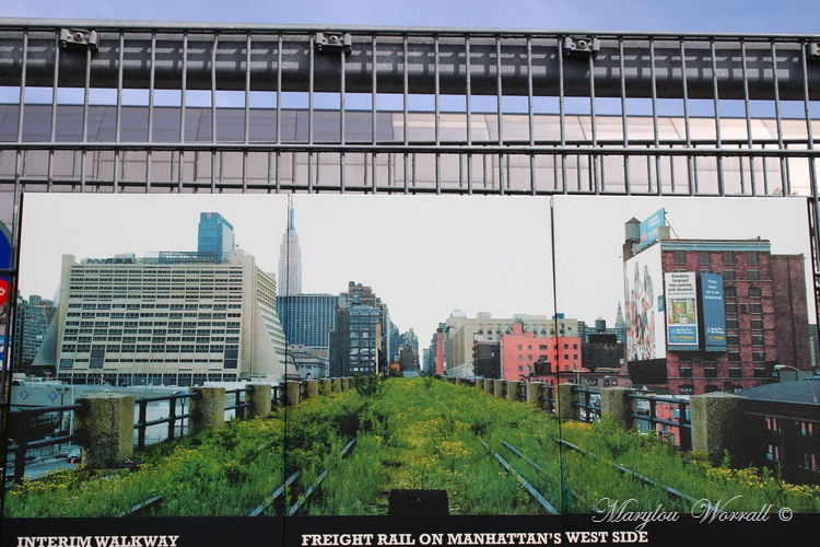 New York : The High Line 2/2
