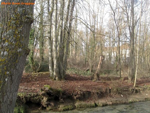 """""""Le site de la promenade de la Douix """" a été aménagé, nous révèle René Drappier ..."""