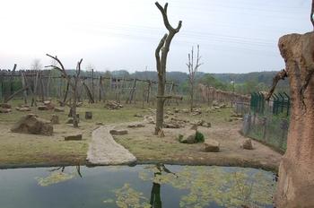 Zoo Osnabruck d50 2012 044