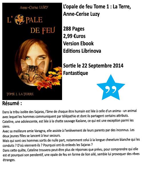 L'opale de Feu tome 1 : La Terre, Anne-Cerise Luzy