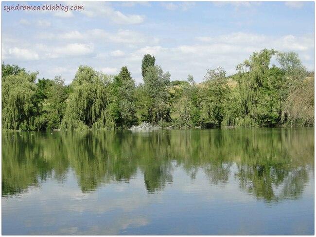 Le grand étang du Chateau de Moidière