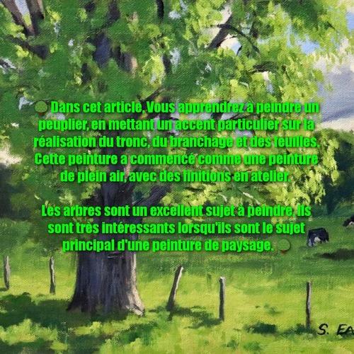 Dessin et peinture - vidéo 3387 : Comment peindre des arbres et du feuillage ? - acrylique, huile.