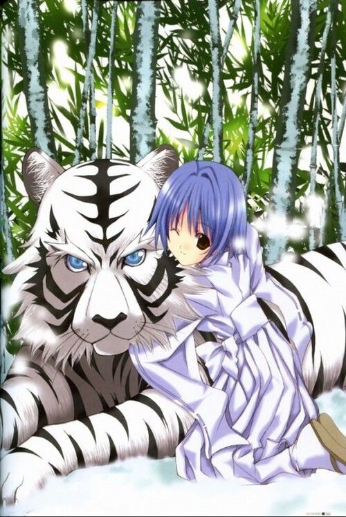 le tigre et le dragon