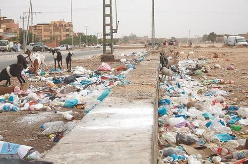 Alger une des villes les plus sale du monde