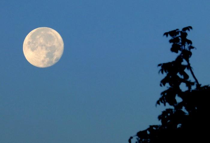 Super lune !