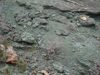 Gros plan montrant la structure par endroits feuilletée de la roche