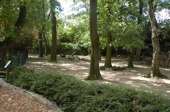 Zoo Duisburg 2012 745