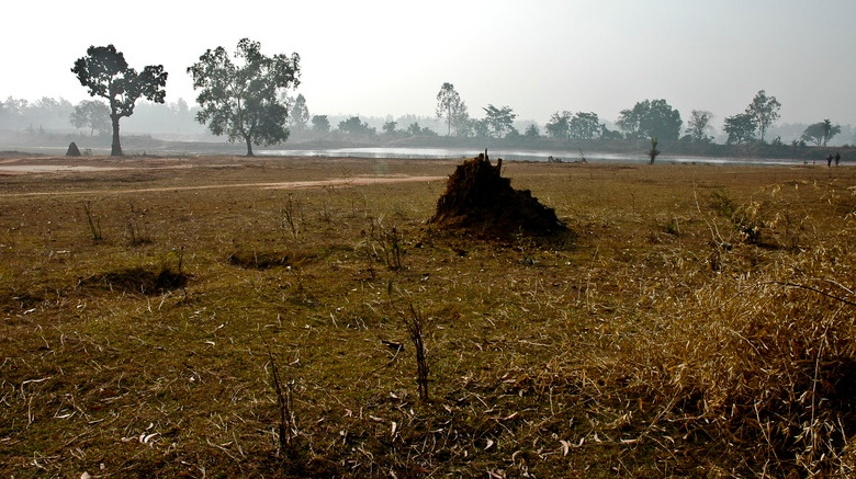 Visions of the land in India (and elsewhere)