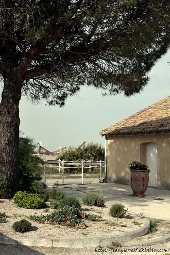 2015.05.14 Salins du Midi, Aigues-Mortes (département du Gard)