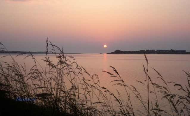 Baie de Kernic rose